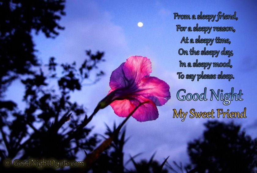 Good Night Messages For Friends - Sleepy message for a sleepy person