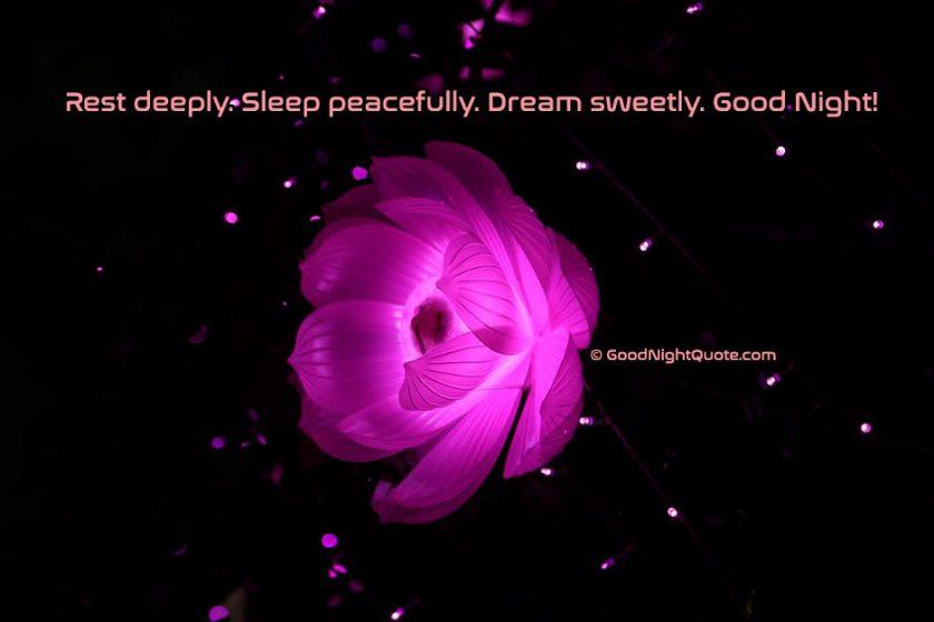 Rest deeply. Sleep peacefully. Dream sweetly. Good Night!