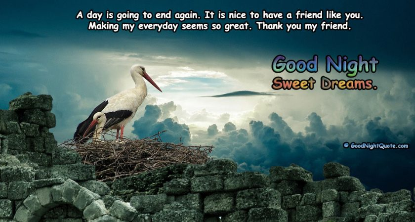 Thank you - Good Night Friend Quote