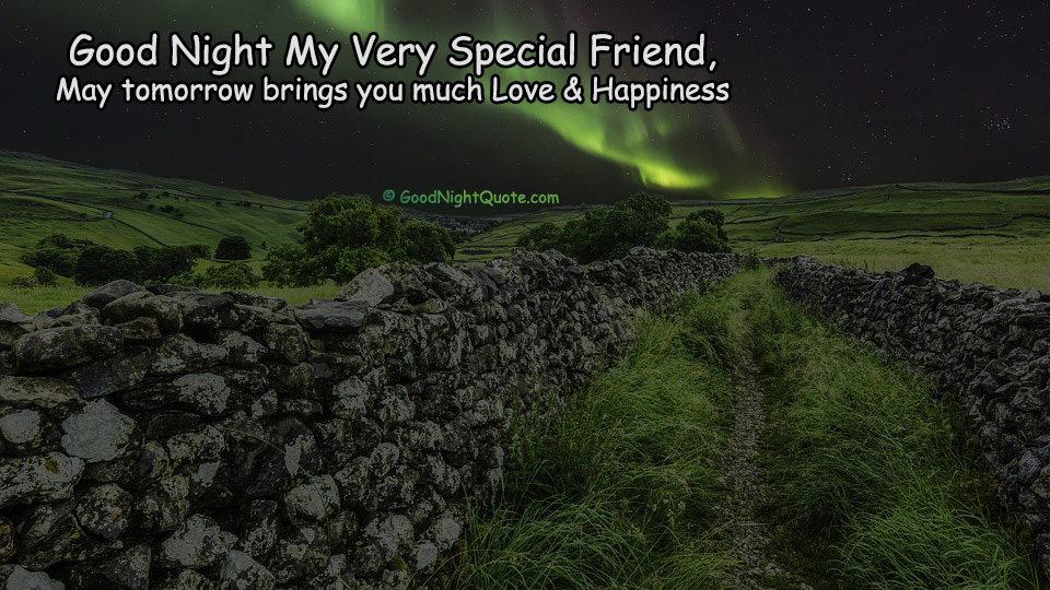 Good Night Quote for Special Friend